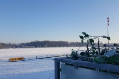 LSV_winter_4