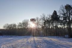 LSV_winter_6